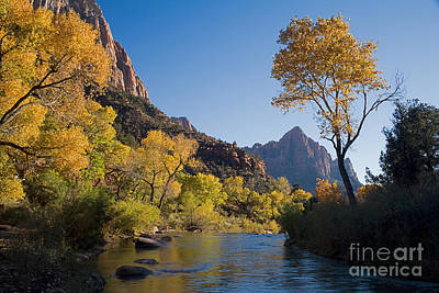 Photograph - The Watchman by Fred Stearns