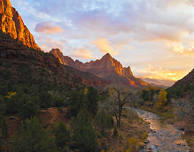 Photograph - The Watchman by Gigi Ebert