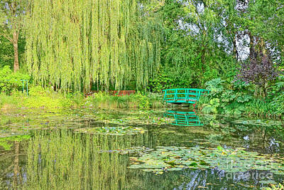 Painter Photograph - The Water Garden by Olivier Le Queinec