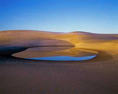 The Water Table Raises Above The Sand Art Print