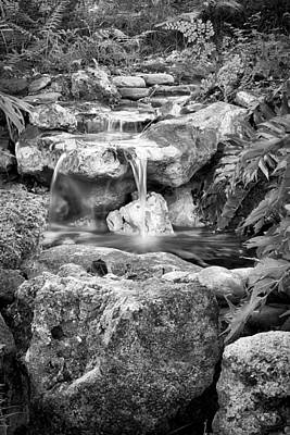 Photograph - The Waterfall by Howard Salmon