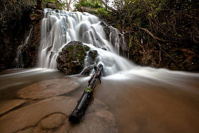 The Waterfall Art Print by Ricardo Silva