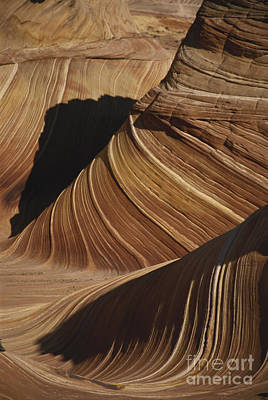 The Wave, Arizona Art Print by Mark Newman