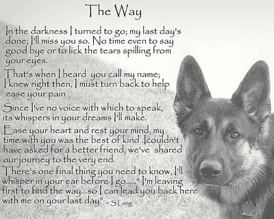 German Shepherd Photograph - The Way by Sue Long