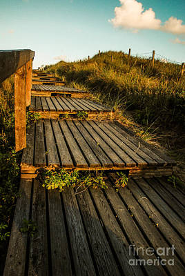 The Way To The Sea Art Print by Hannes Cmarits