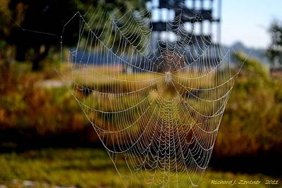 Photograph - The Web by Richard Zentner