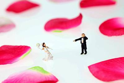 Photograph - The Wedding Among Rose Petals Little People Big World by Paul Ge