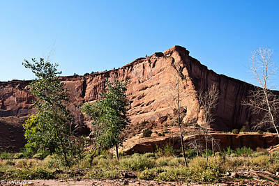Photograph - The Wedge Canyon Dechelly by Bob and Nadine Johnston