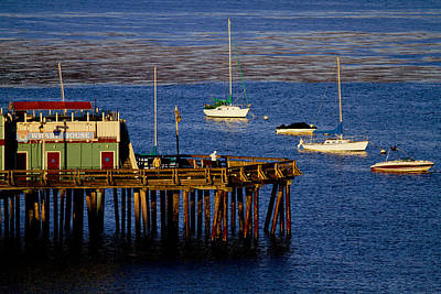 Photograph - The Wharf by Tom Kelly