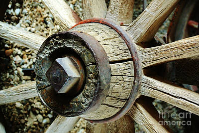 Photograph - The Wheels Don't Go 'round  by Li Newton