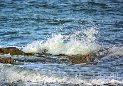 Photograph - The Whirlpool by Kathy Baccari