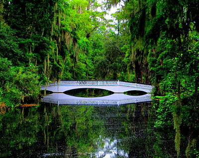 Photograph - The White Bridge At Magnolia Plantation by Randall Weidner