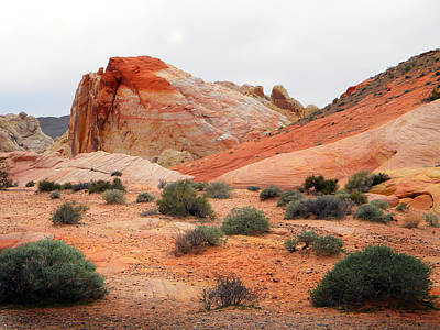 Photograph - The White Domes Valley Of Fire. by Frank Wilson
