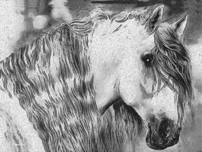 Horses Painting - The White Horse by George Rossidis