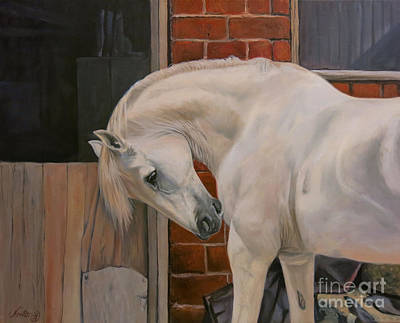 Shetland Ponies Painting - The White Pony by Jeanne Newton Schoborg