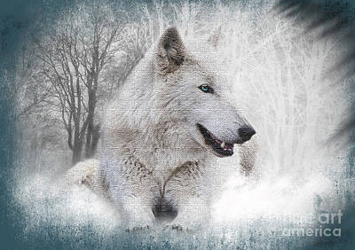 Wolve Photograph - The White Wolf by Kathy Baccari