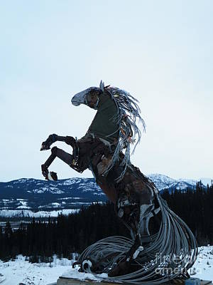 Photograph - The Whitehorse Horse by Brian Boyle