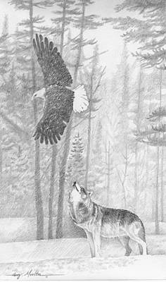 The Wild Art Print