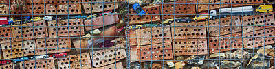 Clay Photograph - The Wildlife Wall by Tim Gainey