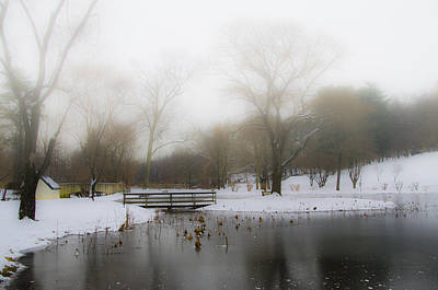 Foggy Lake Digital Art - The Willows In Winter - Newtown Square Pa by Bill Cannon