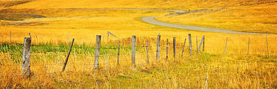 The Winding Road The Crooked Fence And The Bluebird Print by Theresa Tahara