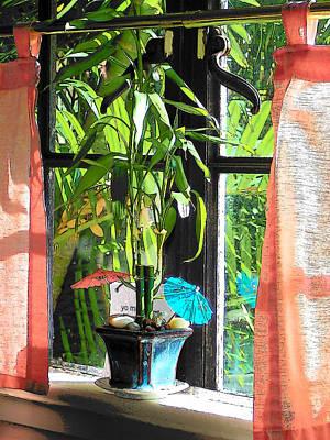 Photograph - Window by Strangefire Art       Scylla Liscombe