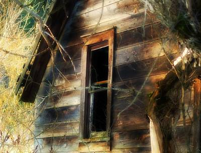 The Window2 Art Print by Loni Collins
