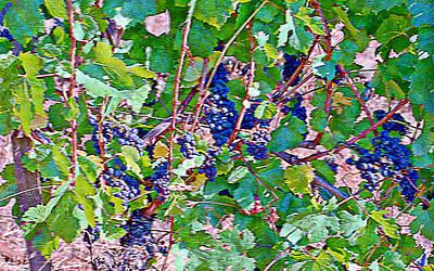 The Wine Maker I Art Print by Ken Evans