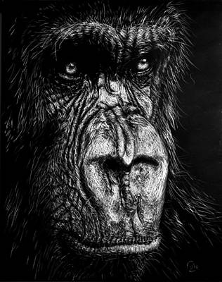 The Wise Simian Original by Nathan Cole