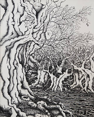 Tolkien Drawing - The Withywindle by Rachel Christine Nowicki