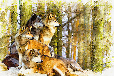 The Wolf Pack  Original by Don Kuing