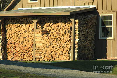 Photograph - The Wood Pile by Max  Greene