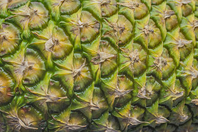 Photograph - The World Famous Pineapple Fruit by David Haskett