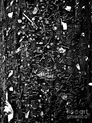 Photograph - The Wounded Telephone Pole No.1 by Fei A