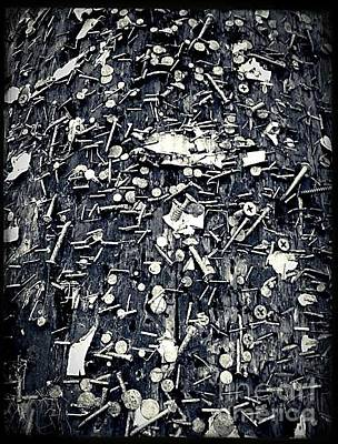 Photograph - The Wounded Telephone Pole No.2 by Fei A