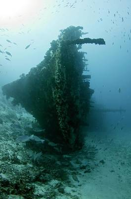 The Wreck Of Skipjack In The Maldives Art Print