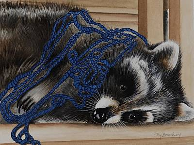 Raccoon Mixed Media - The Yarn Won by Joy Bradley