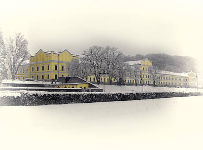 Photograph - The Yellow House - Rehab Center Ybbs On The Danube by Menega Sabidussi