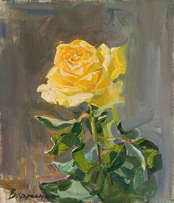 Roses Royalty-Free and Rights-Managed Images - The yellow rose in blossom by Victoria Kharchenko