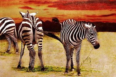 Zebra Mixed Media - The Zebras by Angela Doelling AD DESIGN Photo and PhotoArt