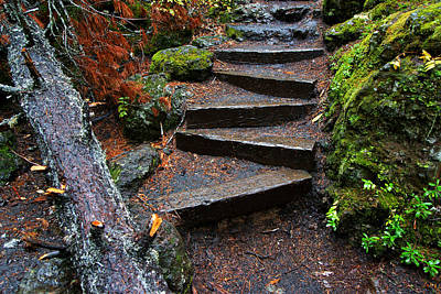 Photograph - The Zigzag Stairs by Daniel Woodrum