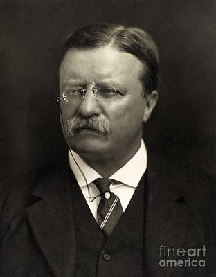 Statesmen Painting - Theodore Roosevelt by Unknown