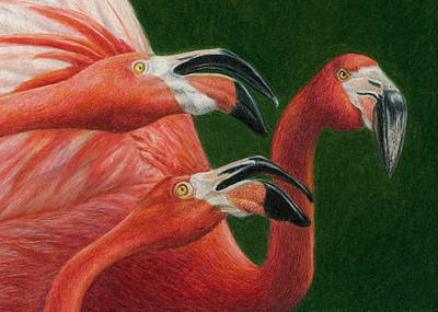 Flamingos Painting - There Are Always Critics by Pat Erickson