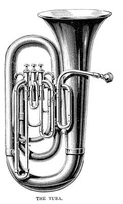 Euphonium Drawing - There Are Three Sizes Of Tuba  - by Mary Evans Picture Library