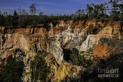 Beauty In Erosion Art Print by Marilyn Carlyle Greiner