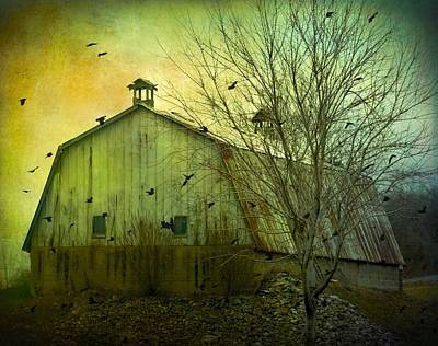 Barn Lots Photograph - There Is Cawing Outside by Gothicrow Images