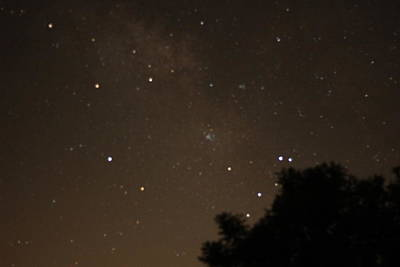 Canon Rebel T2i Photograph - There's A Galaxy Just Out My Front Door by Carolina Liechtenstein