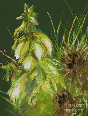 Theres A Yucca In My Yard Art Print by Frances Marino
