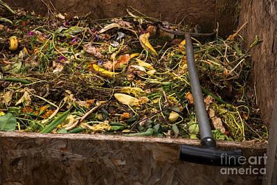 Mellow Yellow - Theresas Compost Bin by Iris Richardson