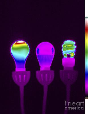 Photograph - Thermogram Of Light Bulbs by GIPhotoStock